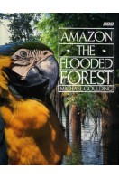 Amazon : The Flooded Forest