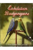 Exhibition Budgerigars