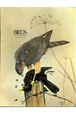 Birds : RSPB Magazine Jul - Aug 1972 : Volume 4 Number 4