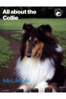 All about the Collie