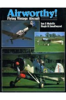Airworthy! : Flying Veteran and Vintage Aircraft