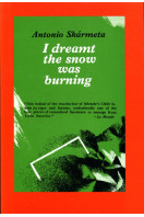 I Dreamt the Snow Was Burning: A Novel of Chile