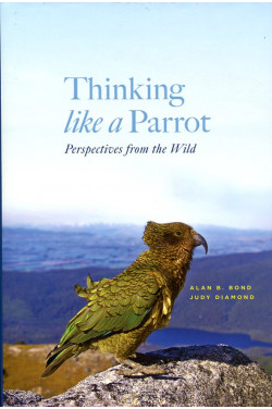 Thinking Like a Parrot : Perspectives from the Wild