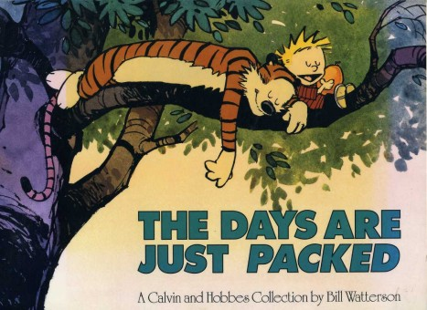 WATTERSON, BILL - The Days Are Just Packed (Calvin and Hobbes)